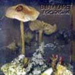Ascension – New Dark Age Vol.2